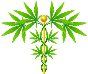 Medical Cannabis Certification - Shore Wellness and Med